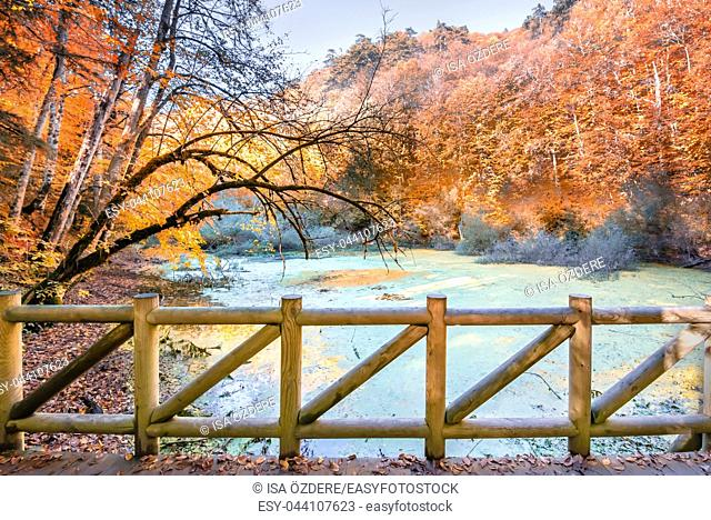 Autumn color of pond at Yedigoller Nature park located in Bolu,Turkey with wooden handrails bridge on foreground. Autumn concept