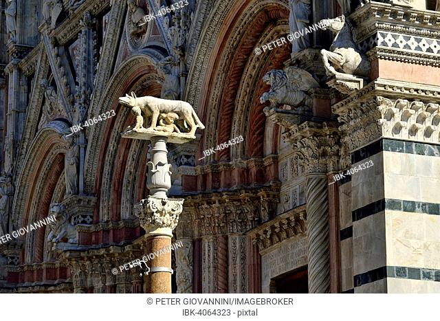 She-wolf with Romulus and Remus in front of the Duomo of Siena, Cattedrale di Santa Maria Assunta, Siena, Province of Siena, Tuscany, Italy