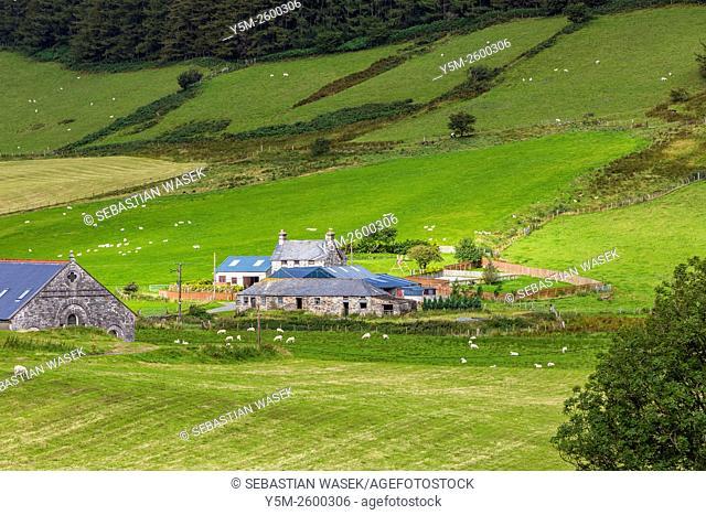 Cwm Penmachno, Conwy, Wales, United Kingdom, Europe