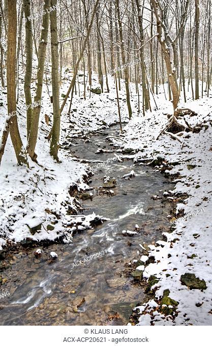 Ancaster Creek in winter, Bruce Trail, Niagara Escarpment, Hamilton, Ontario, Canada