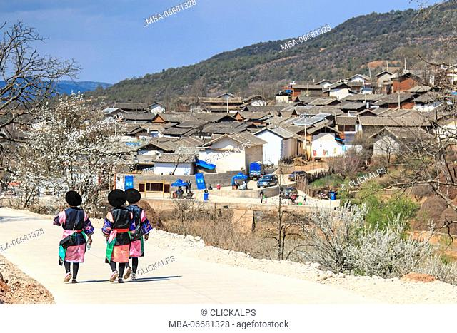 Bai women dressed with the traditional attire walking towards the Qifeng village during the Pear Blossom Festival