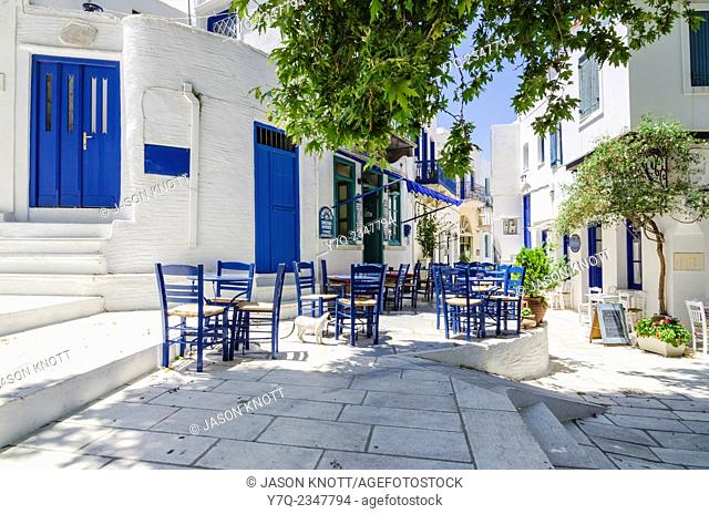 A large Plane Tree shades the main square in Pyrgos Town, Tinos Island, Cyclades, Greece