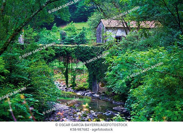 Bridge over river, Cantabria