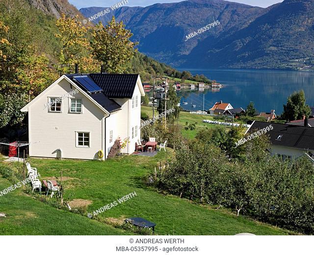 Village Solvorn, at the Lustrafjord, inner branch of Sognefjord, typical norwegian wooden houses, autumn, Lustrafjord, Sogn og Fjordane, Norway, Europe