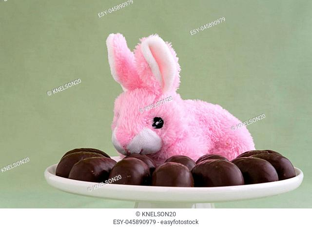 Pink stuffed Easter bunny on a white cake plate with chocolate covered marshmallow eggs