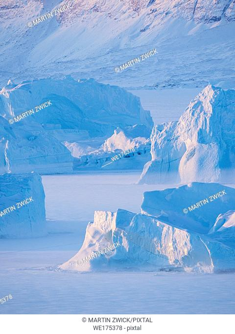Icebergs frozen into the sea ice of the Uummannaq Fjordsystem during winter in the northwest of greenland north of the polar circle