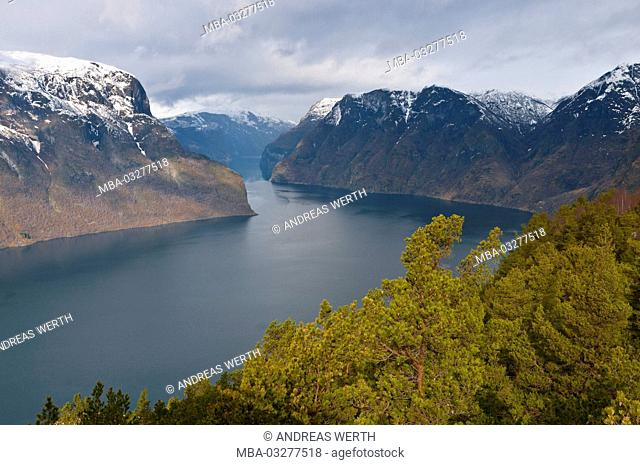 View of the platform Stegastein in the Aurlandsfjord, a branch of the Sognefjords, late winters, Sogn of Fjordane, Norway