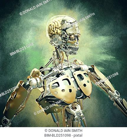 Portrait of robot