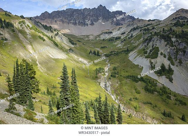 View of alpine meadow and Gilbert Peak, along the Pacific Crest Trail, Goat Rocks Wilderness, Washington