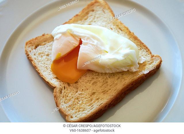 -Poche egg with bread- Gastronomy