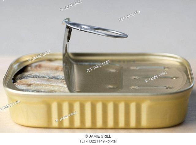 Can of sardines partly opened