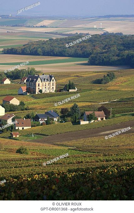 MARNE (51), CHAMPAGNE-ARDENNE, FRANCE