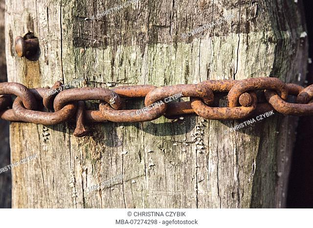 Street Photography in Venice, rusty chain on a wooden stake, Italy