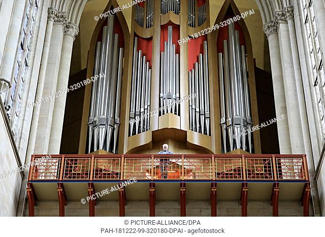07 December 2018, Saxony-Anhalt, Magdeburg: Cathedral cantor Barry Jordan looks down from the cathedral organ in Magdeburg Cathedral