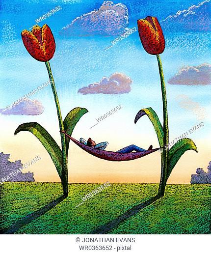 Tulip Hammock