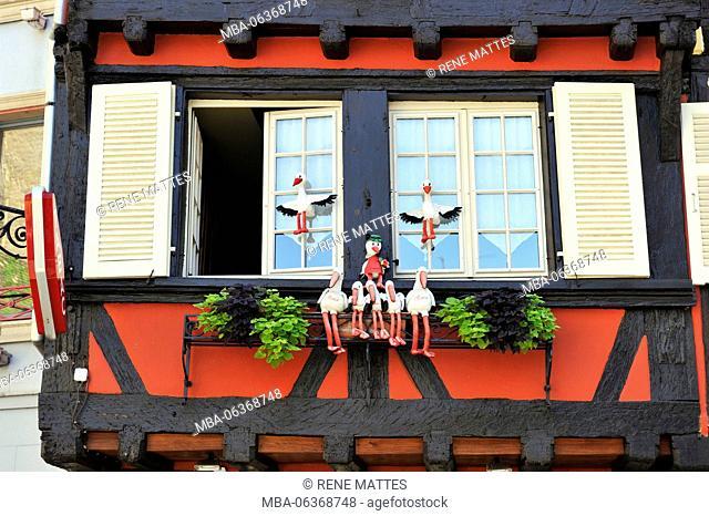 France, Haut Rhin, Colmar, half-timbering house