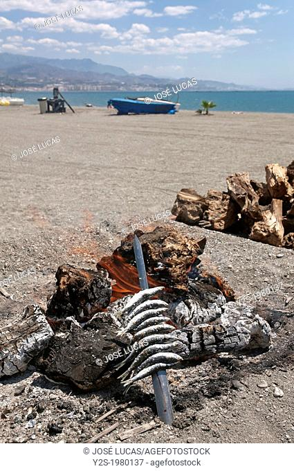 Skewers or Espeto of sardines, Torre del Mar beach, Malaga-province, Andalusia, Spain, Europe