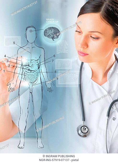 Female medical doctor working with virtual interface examining human male body