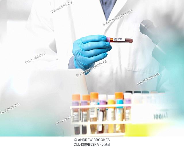Scientist checking blood sample information ready for clinical testing in a laboratory