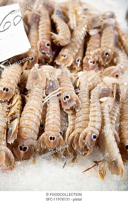 Shrimp in the market