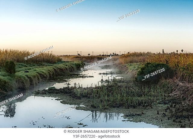 Early morning mist rises over a wetland as the tide recedes exposing the reeds and the grassy banks. Lakeside, Cape Town, South Africa