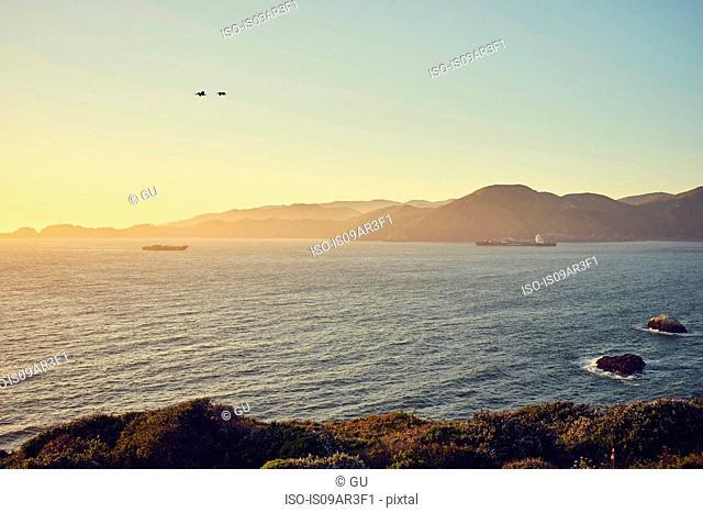 Bonita Cove, San Francisco, California, USA