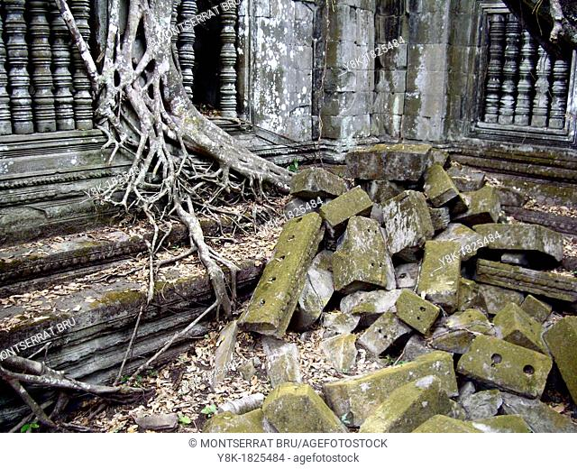 Beng Mealea temple with tree roots overtaking the building in Cambodia