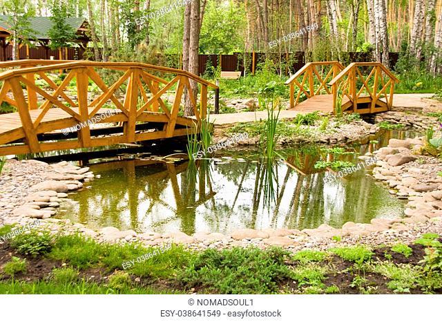 Freshwater marsh with bridges