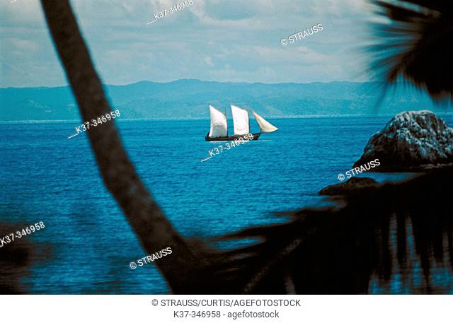 Palm fringed island with Arab style dhows in Mozambique Channel. Republic of Madagascar