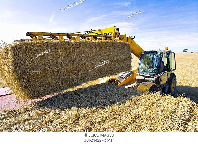 Tractor stacking straw bales on trailer in sunny, rural field