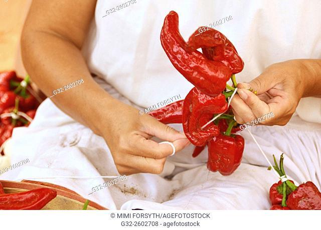 Woman stringing red chiles to make a 'ristra', La Cienega, New Mexico, USA