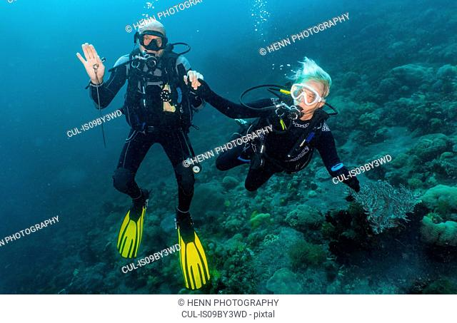 Senior couple scuba diving close to Komodo Island, portrait, Nusa Tenggara Timur, Indonesia