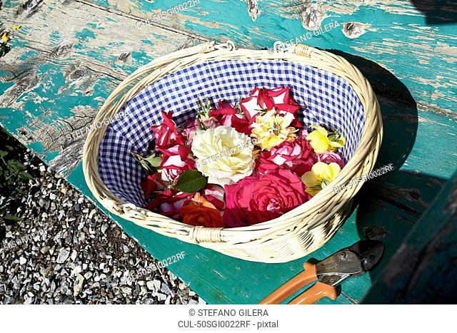Basket of flowers on wooden bench