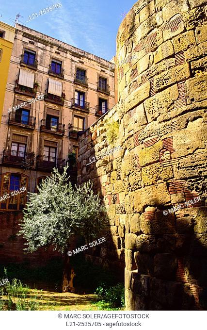 Roman wall. Barcelona, Catalonia, Spain