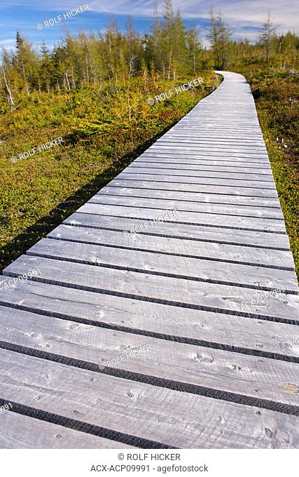 Boardwalk at the start of the Boney Shore Trail, across the harbour from the town of Red Bay, Labrador Coastal Drive, Viking Trail, Strait of Belle Isle