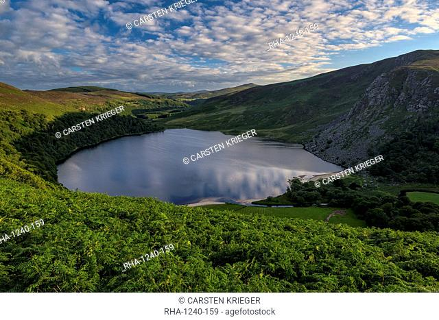 Lough Tay, County Wicklow, Leinster, Republic of Ireland, Europe