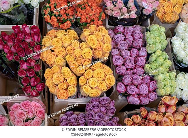 Several bunches of Garden Roses grouped by bright colors at the Bronisze Wholesale Market - one of the biggest fruits and vegetables markets in Poland