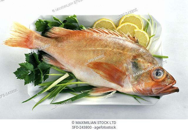 Fresh redfish with leeks, lemon and parsley
