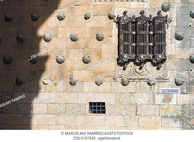Detail, windows in Gothic style. The Casa de las Conchas is a historical building in Salamanca. Its most peculiar feature is the façade