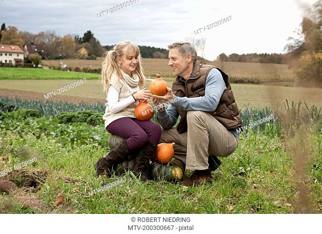Father and daughter with pumpkins on field