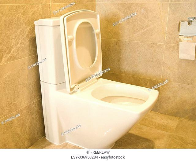closestool and tissue in a bathroom