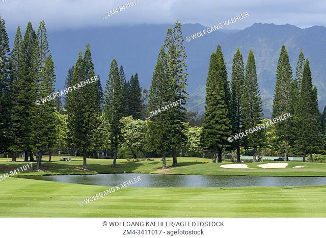 View of the Princeville Makai Golf Club and Norfolk pine trees on the Hawaiian Island of Kauai, Hawaii, USA
