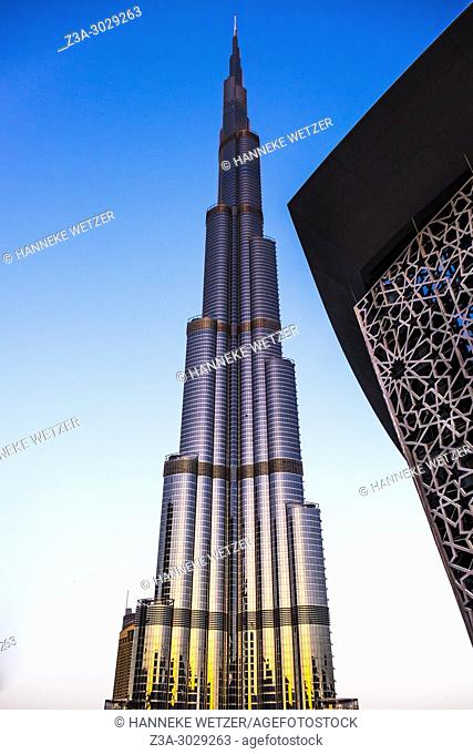 The Burj Khalifa in Dubai, the highest building of the world, during golden hour