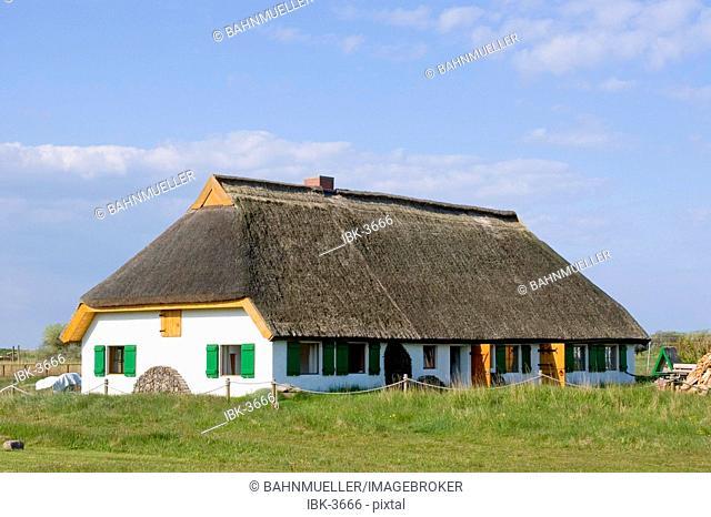 Hiddensee island Mecklenburg Vorpommern Germany Neuendorf