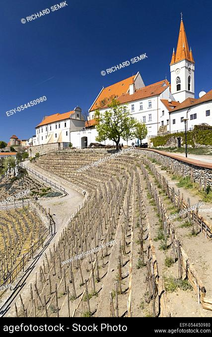 Town Vineyard Znojmo, South Moravia Czech Republic