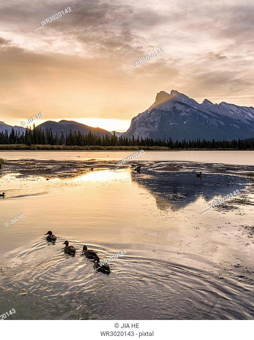 Morning landscape in the Vermilion Lakes, Banff National Park, UNESCO World Heritage Site, Canadian Rockies, Alberta, Canada, North America