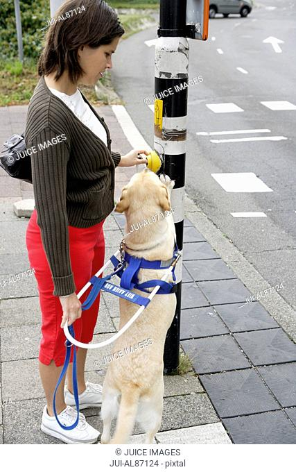 Blind woman and seeing eye dog at street crossing