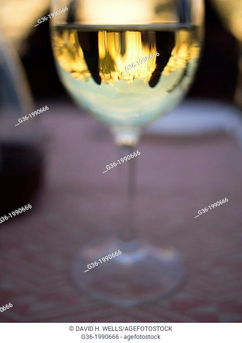 Reflection of people and buildings in wine glass at Udaipur, Rajasthan, India