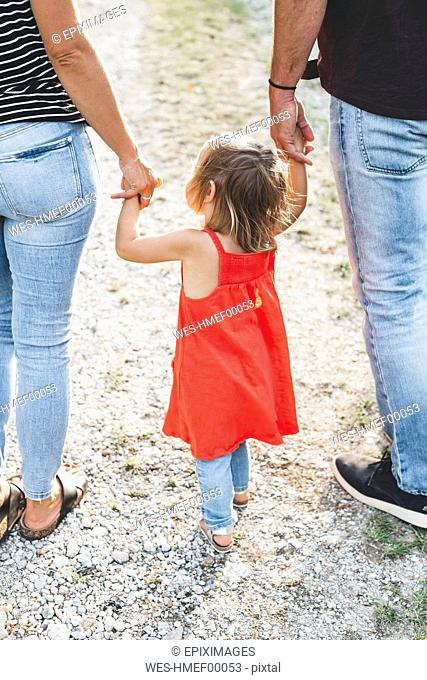 Girl walking on parent's hands on a field path