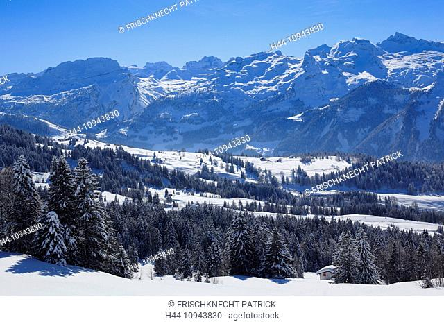 Alps, Alpine wreath, Alpine, panorama, view, mountain, mountains, trees, spruce, spruces, mountains, summits, peaks, Central Switzerland, Internal Swiss Alps